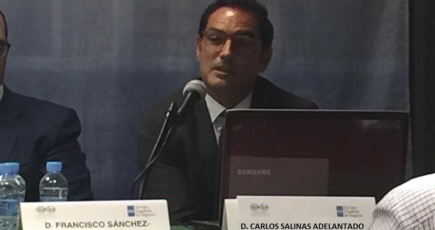 Jornada Sobre Seguros De Transporte Marítimo Y Terrestre Por Carlos Salinas